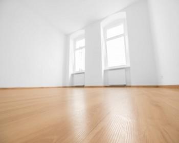 Vinyl floor / striping and waxing